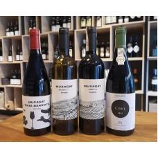Muxagat - nowe wina z Portugalii